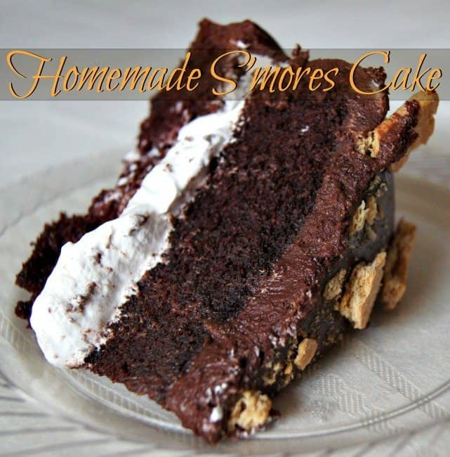 Homemade S'mores Cake Recipe - Honest And Truly!