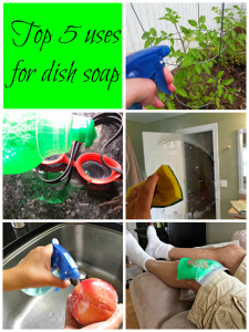 Top 5 uses for dish soap #Palmolive25Ways #shop
