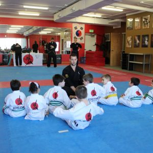 ahievement-martial-arts
